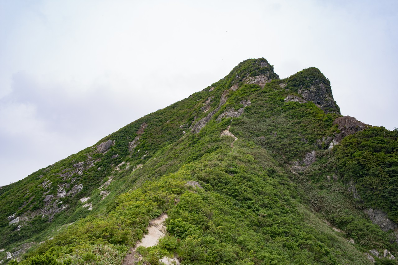 七ツ小屋山との鞍部から見上げた大源太山