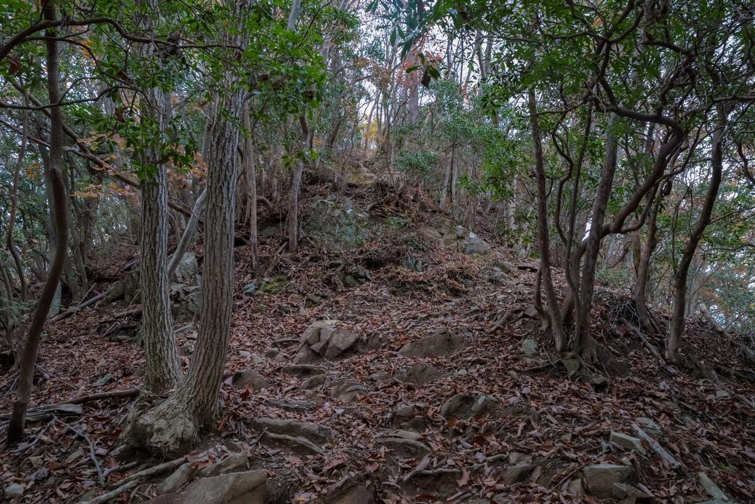 生籐山の岩場