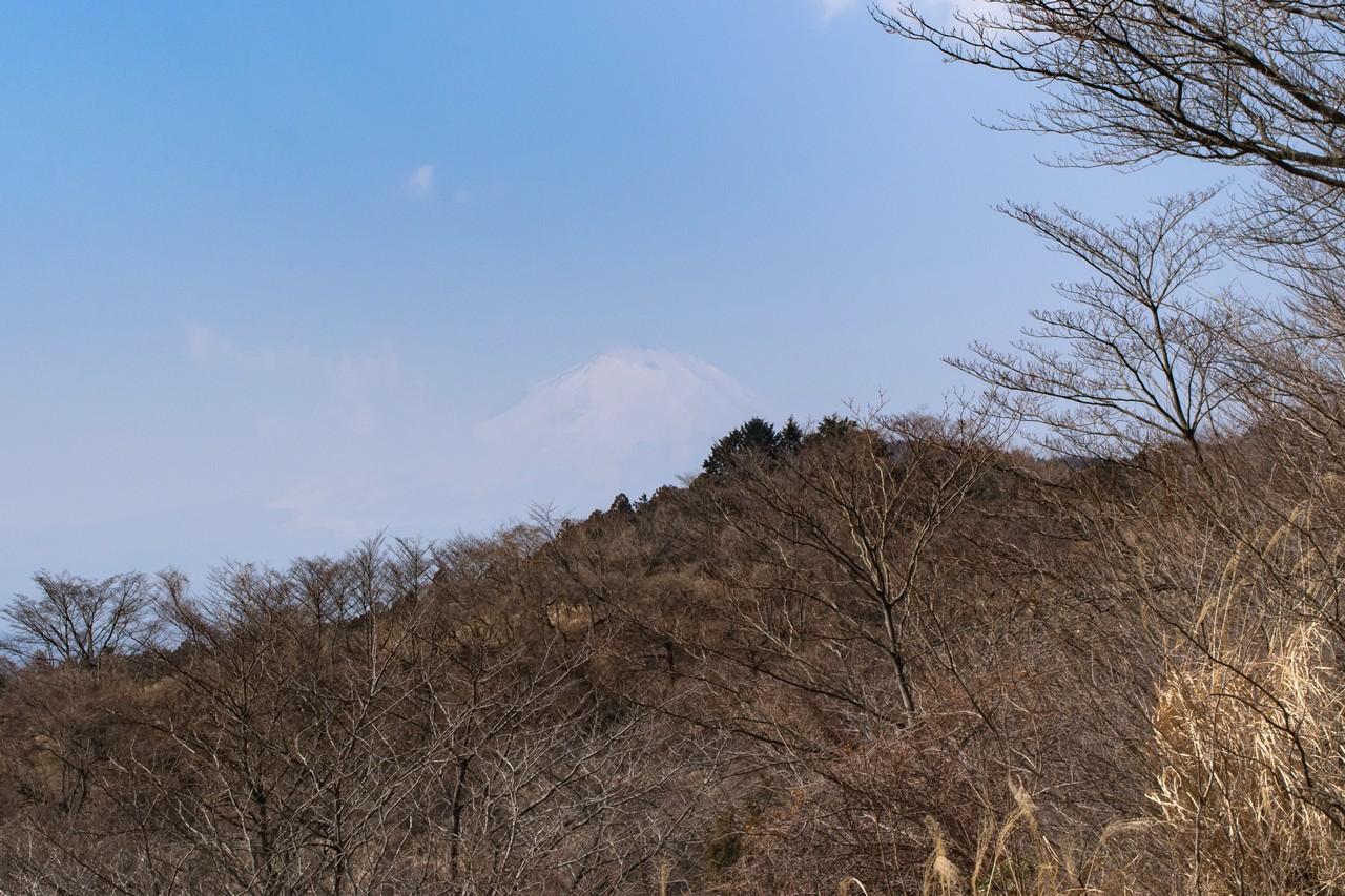 高松山 富士見台から見た富士山
