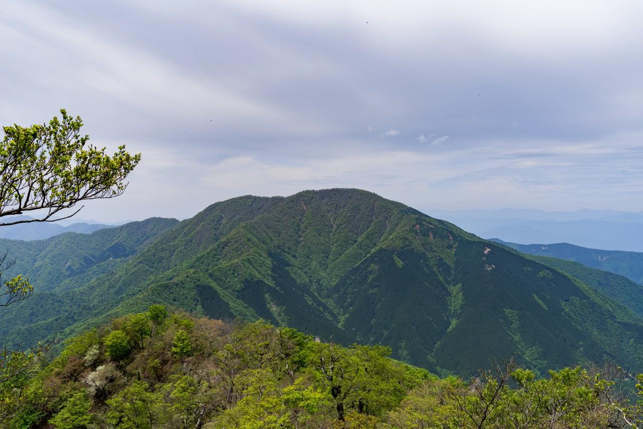犬越路コースから見た大室山