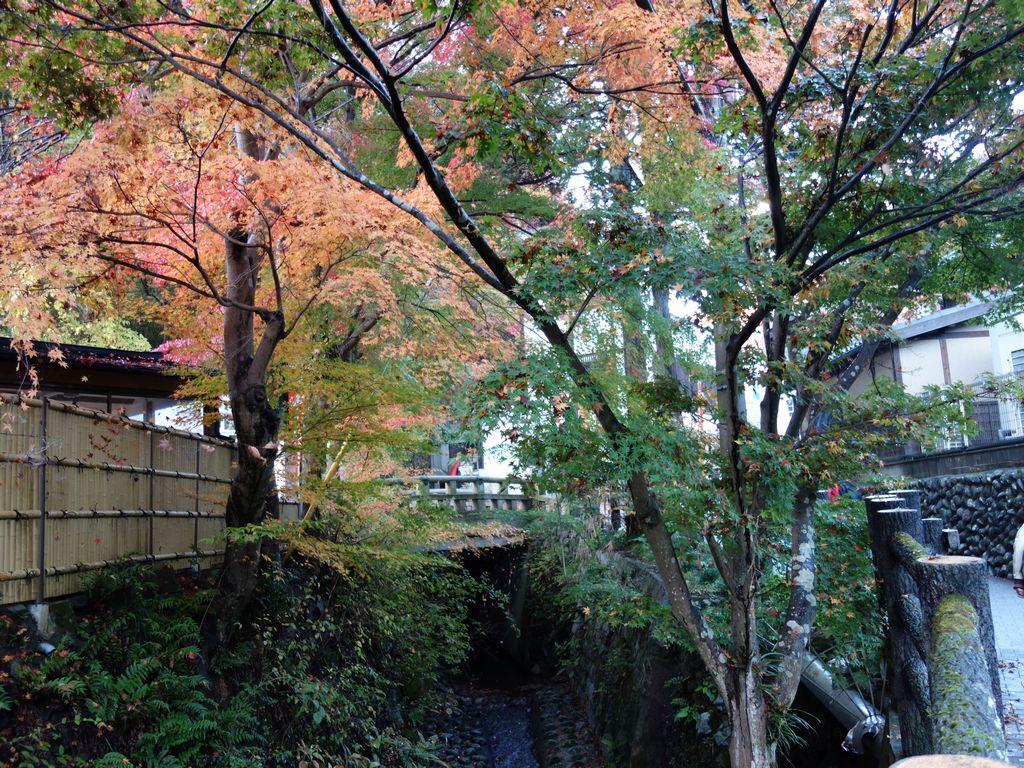 高尾山口駅から清滝駅へ向かう道