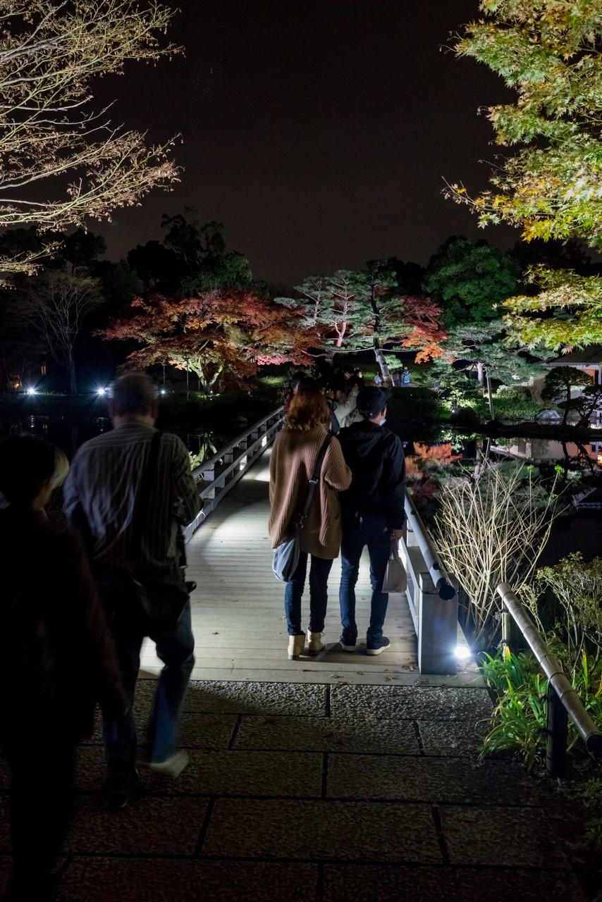 191124昭和記念公園_040