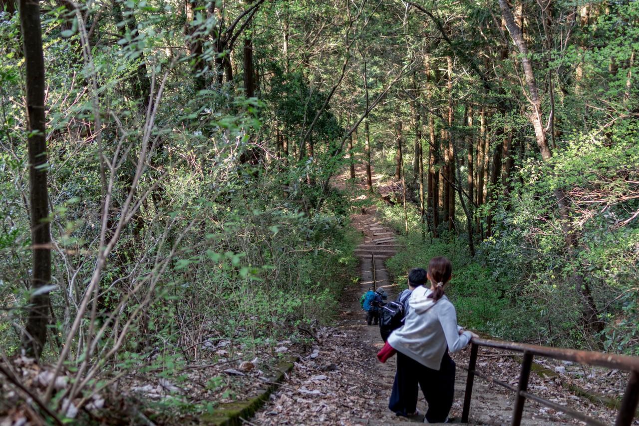 奥多摩 愛宕神社の階段