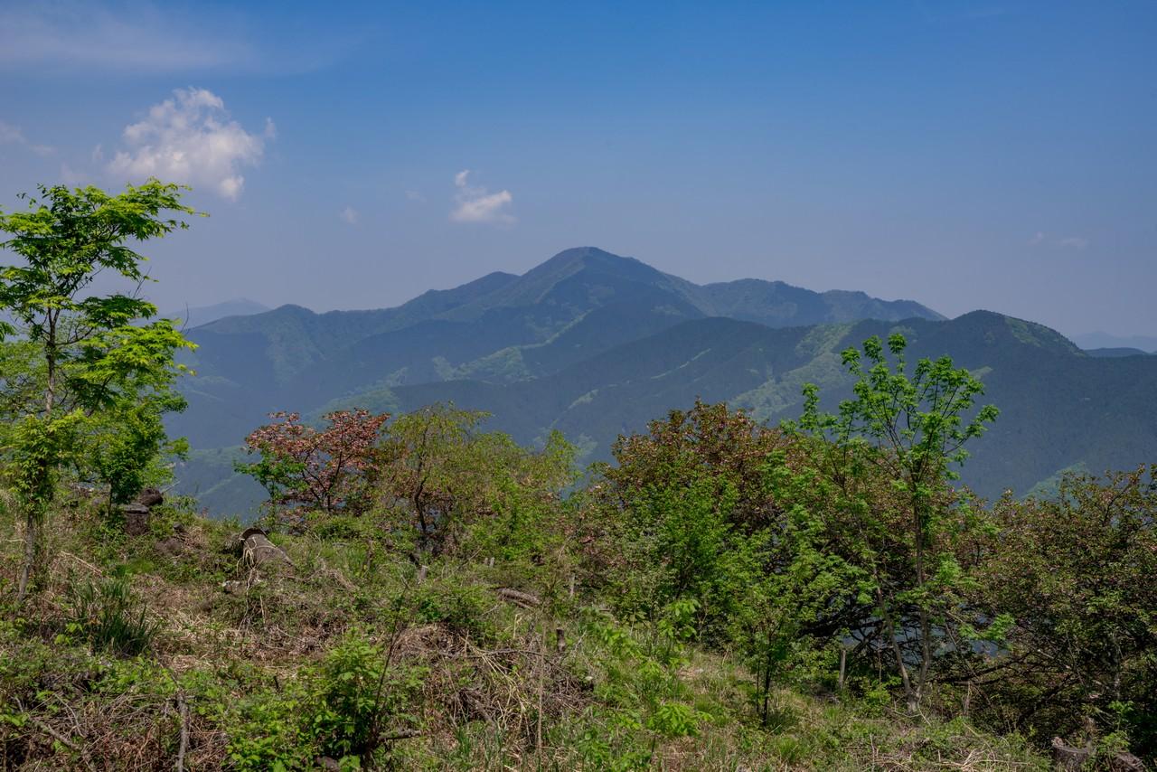 浅間尾根から見た御前山