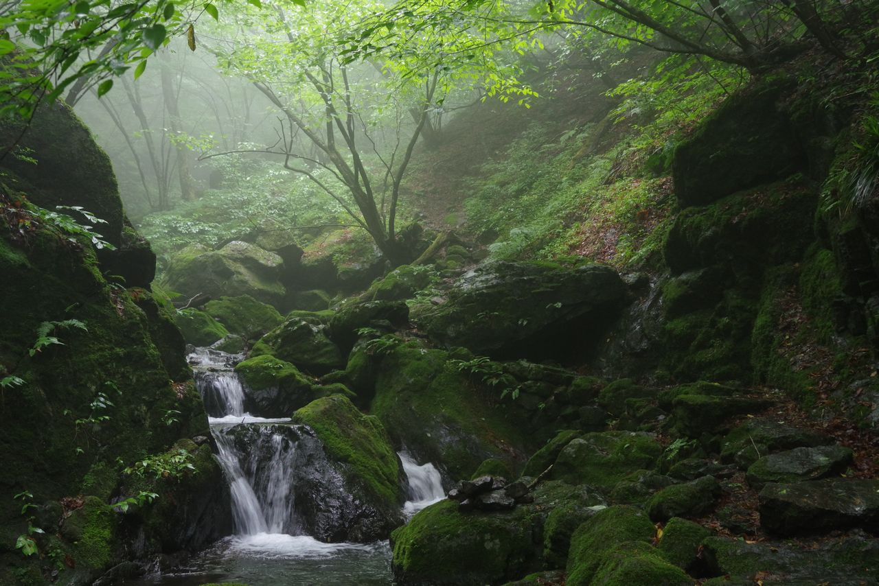 大岳山 鍾乳洞と滝の道