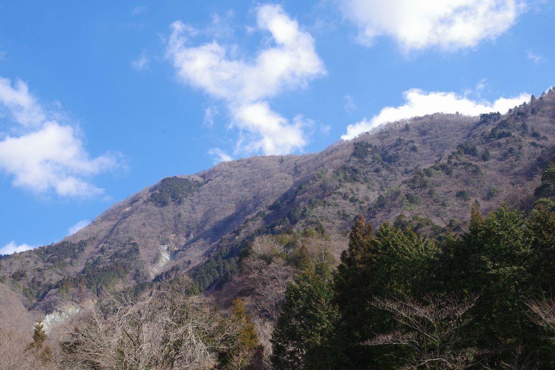 寄沢から見上げた鍋割山