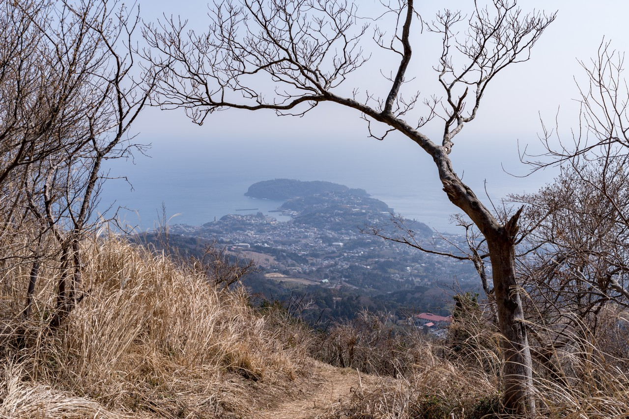 南郷山から見た真鶴半島