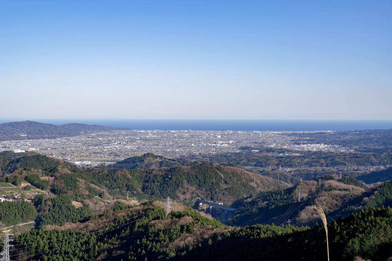 200320大野山_0049