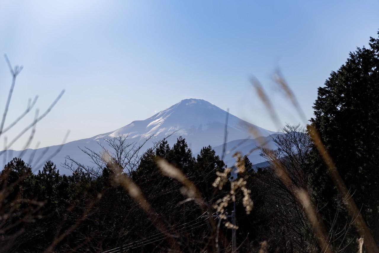 200320大野山_0047