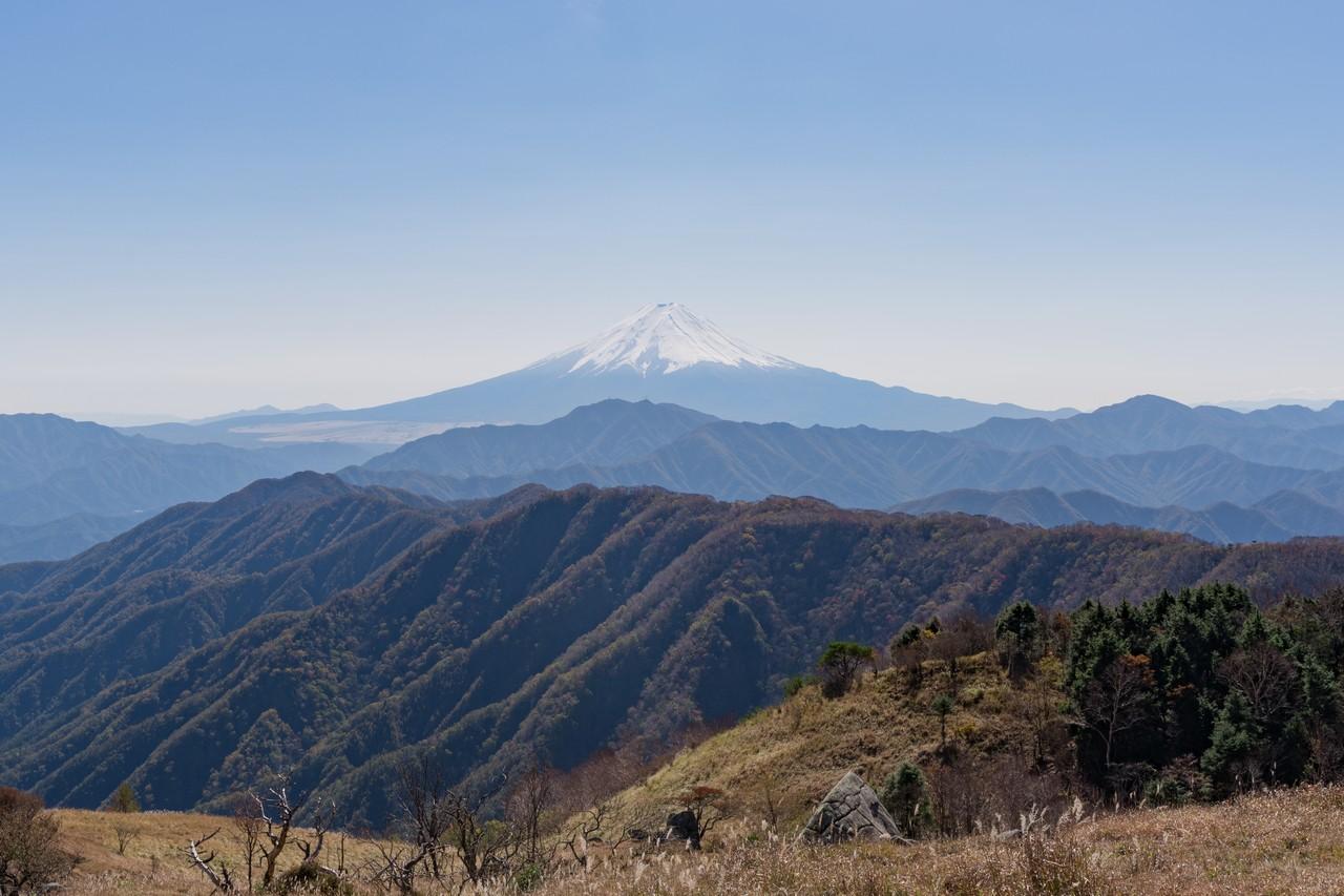 小金沢連嶺 白谷ヶ丸からの富士展望
