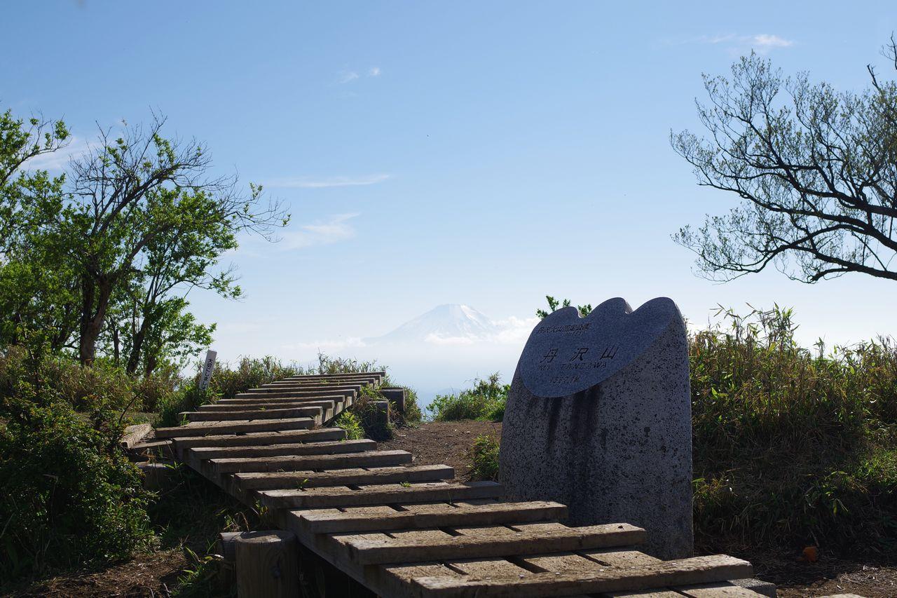 丹沢山から見た富士山