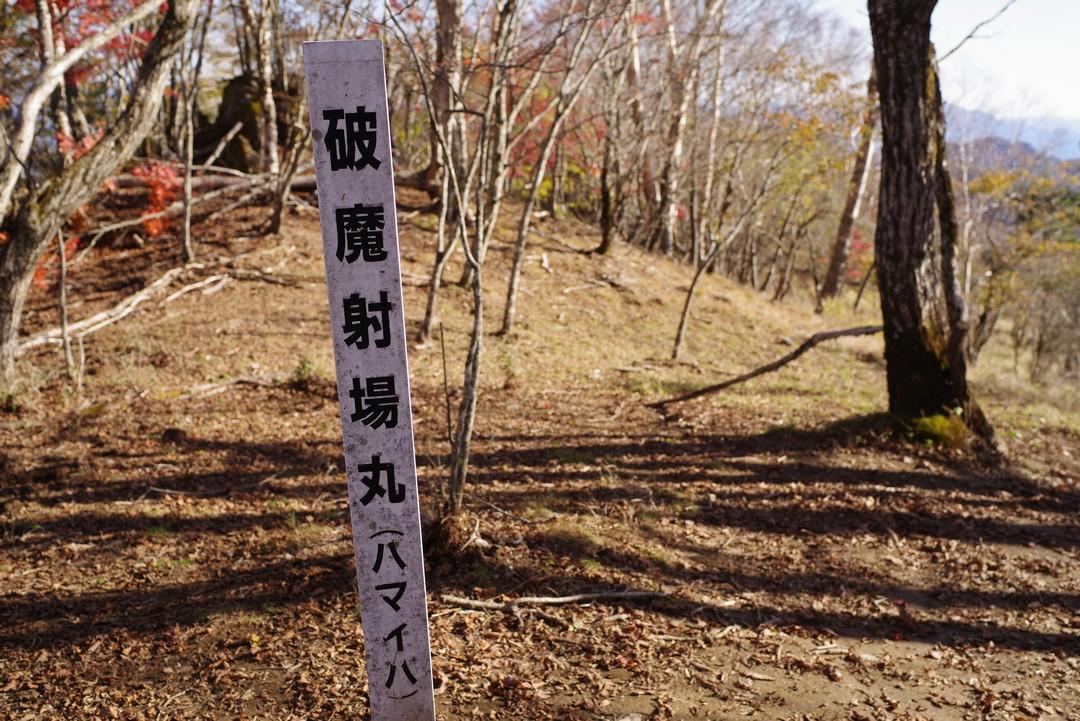 181021小金沢連嶺_111