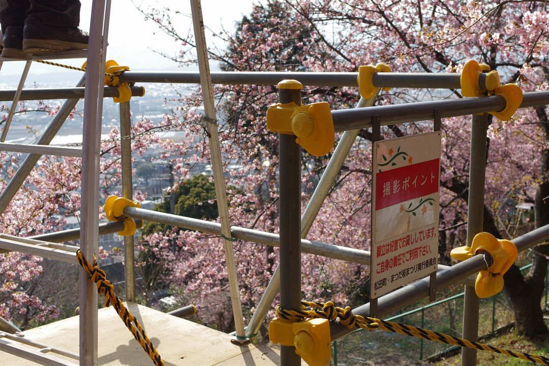 松田山ハーブ園の撮影ポイント