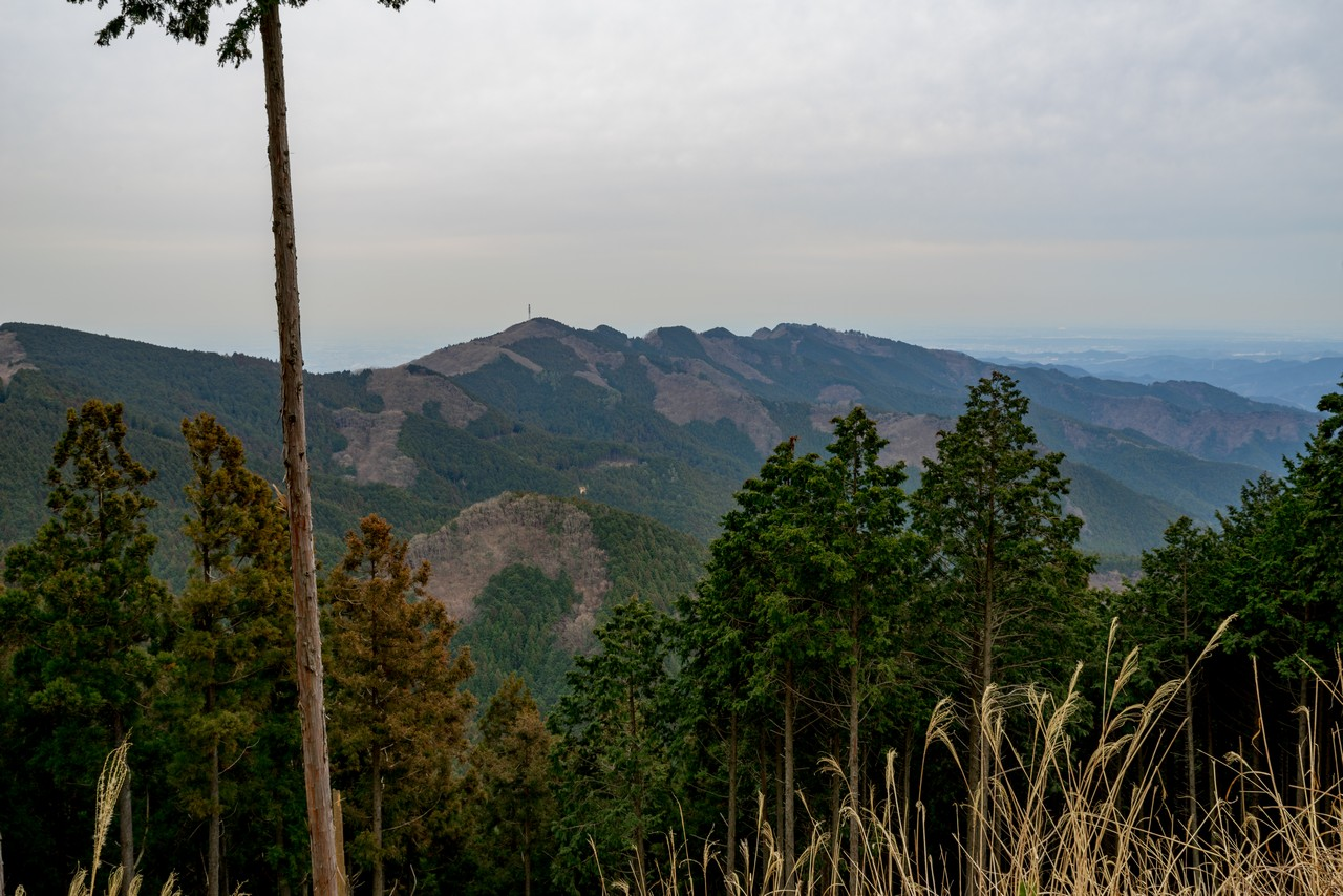 飯能市 つつじ山から見た関八州見晴台