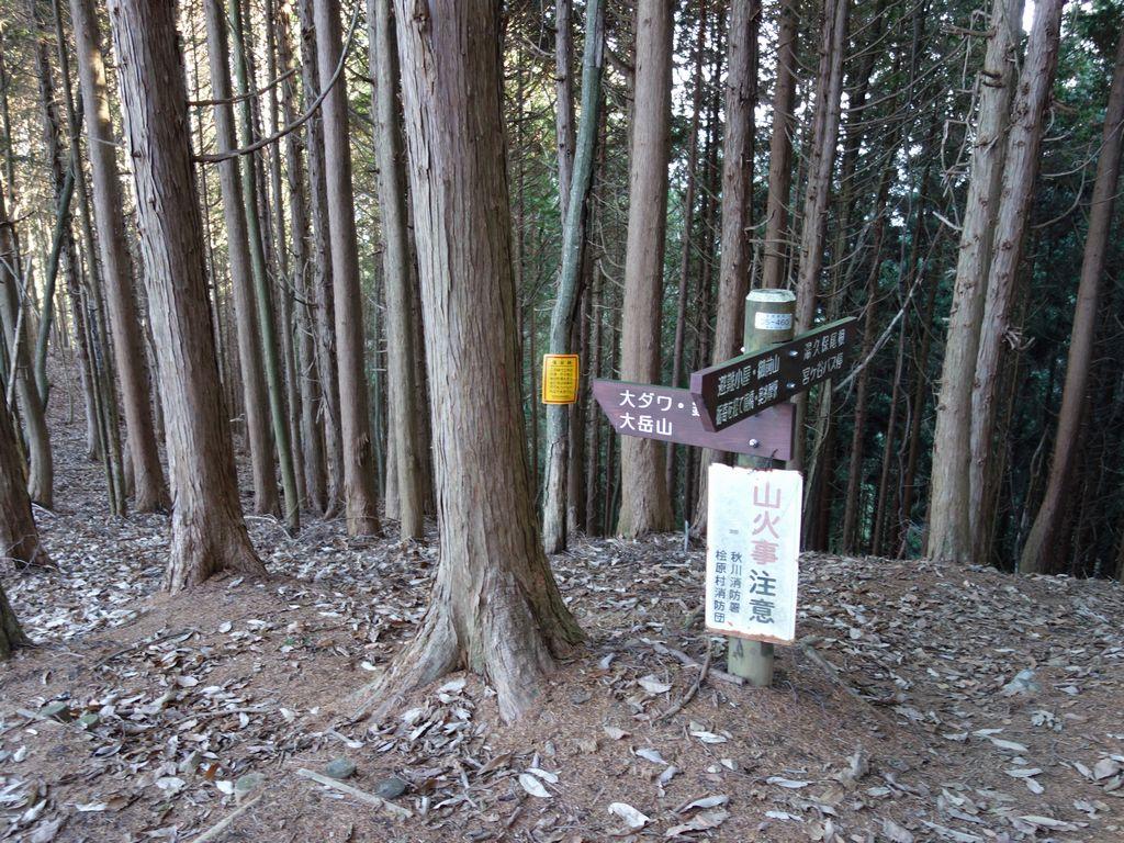 御前山 大ダワ方面への登山道