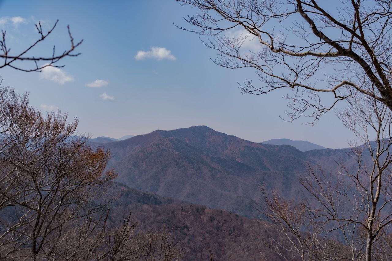 鷹ノ巣山から見た雲取山