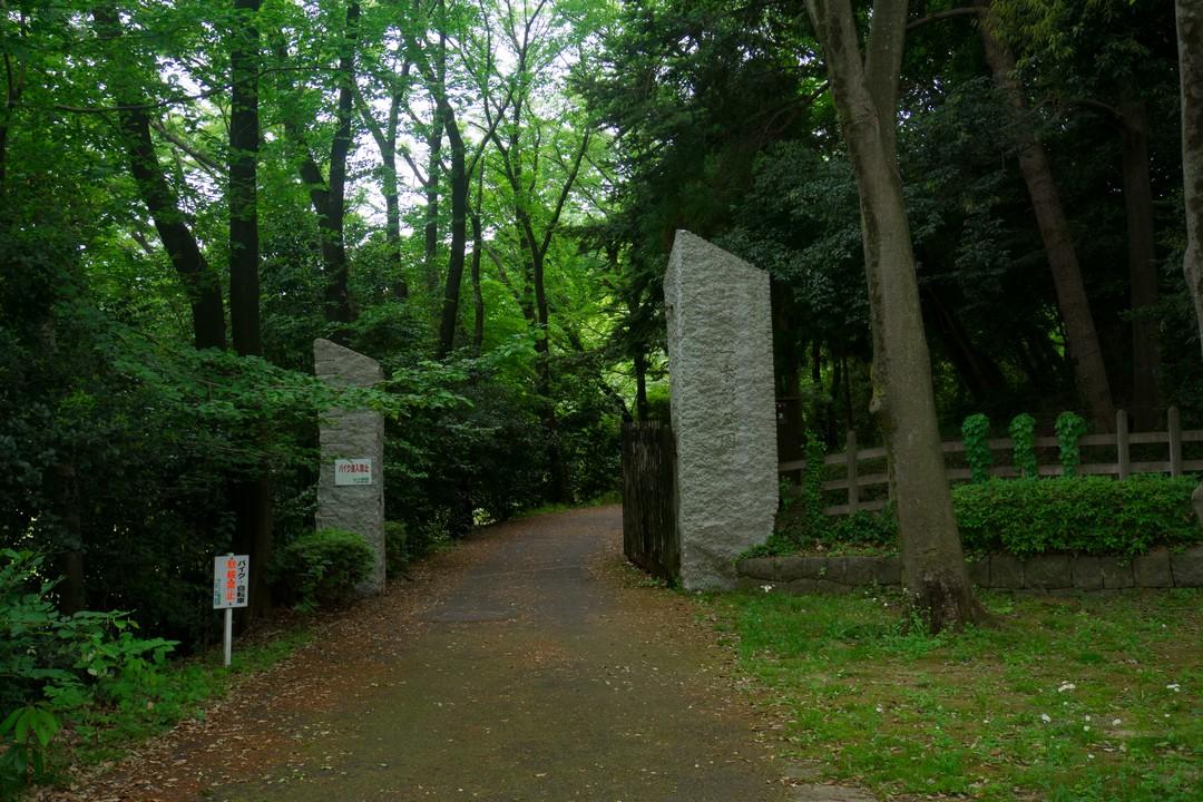 本杉公園の入り口