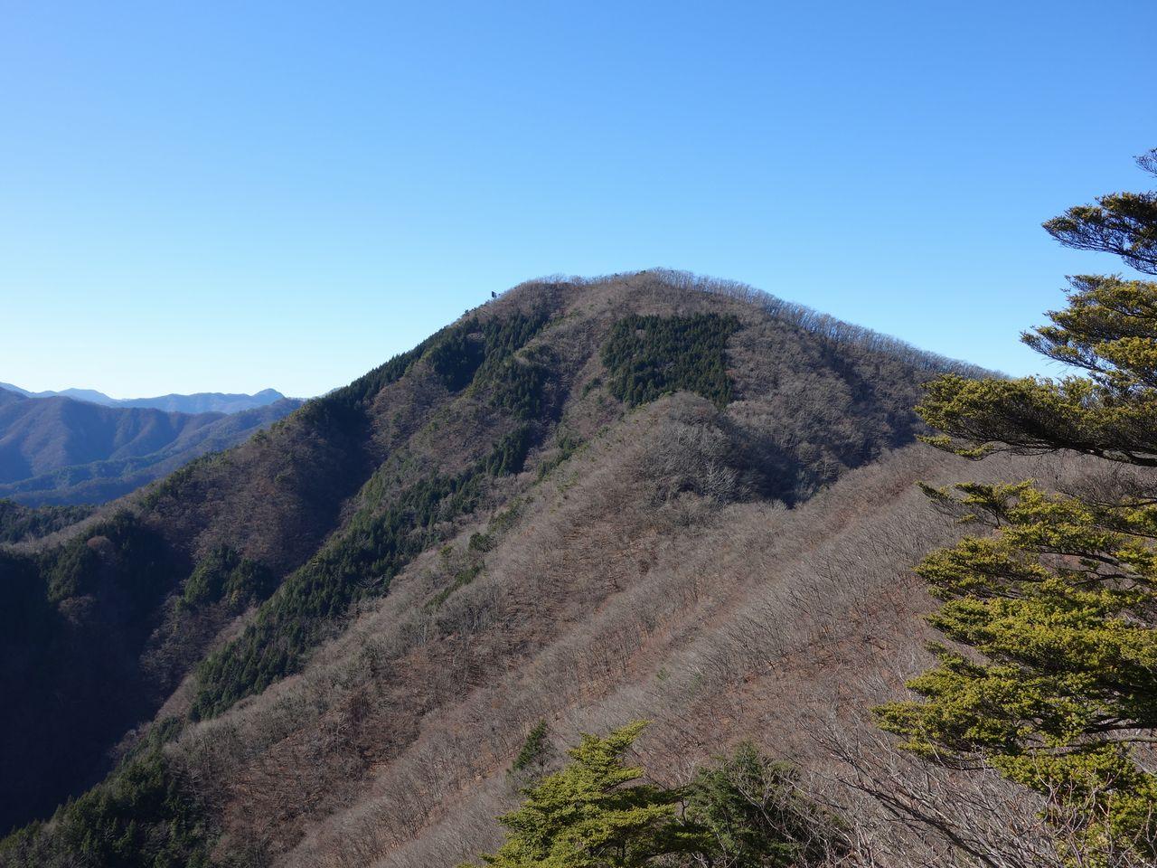 米沢山付近から見た笹子雁ヶ腹摺山
