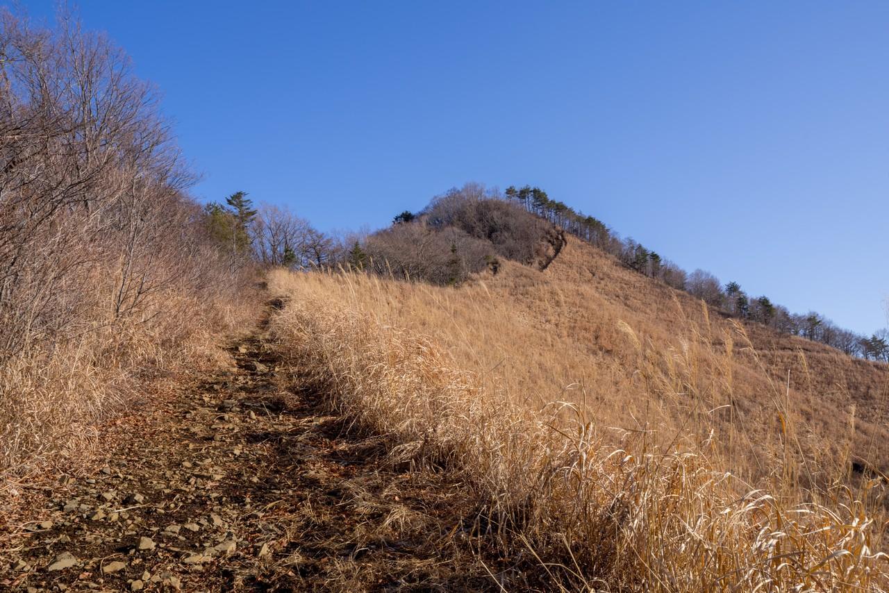 200103杓子山_028
