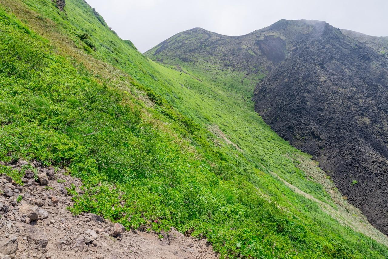 190707秋田駒ヶ岳_074
