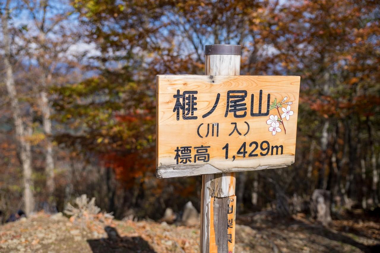 191109大菩薩嶺_076