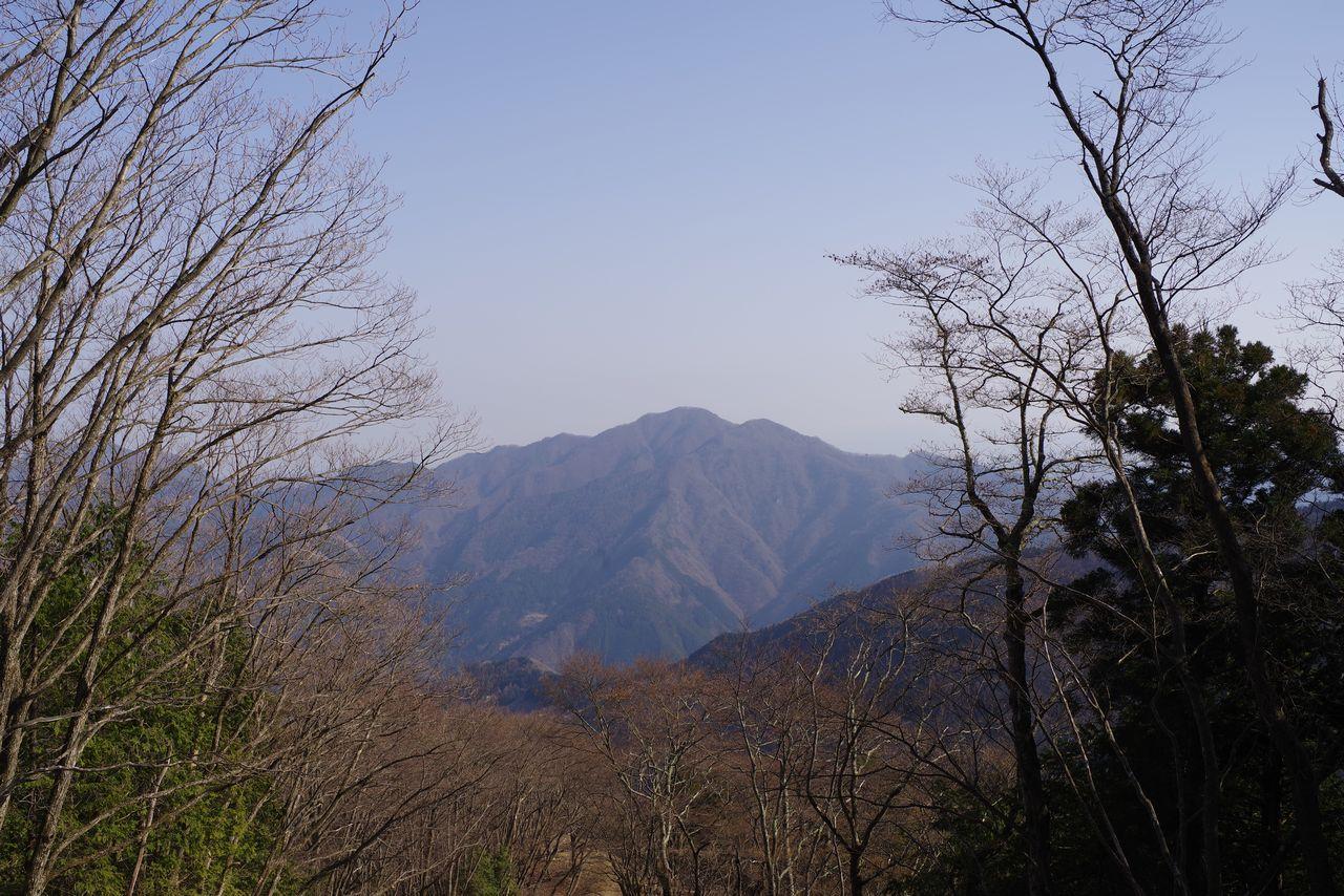 石尾根縦走路から見た御前山
