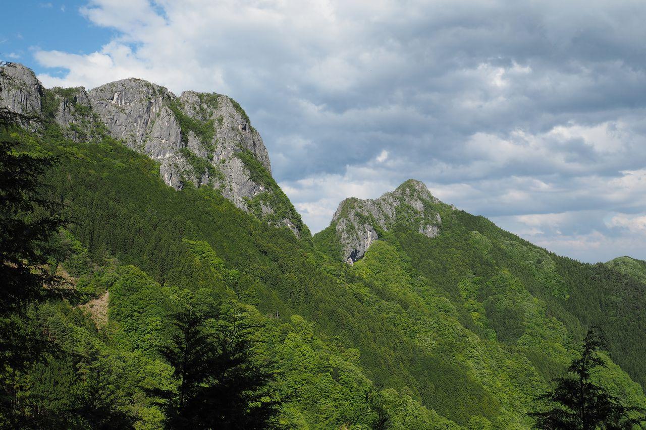 伐採地から見上げる二子山