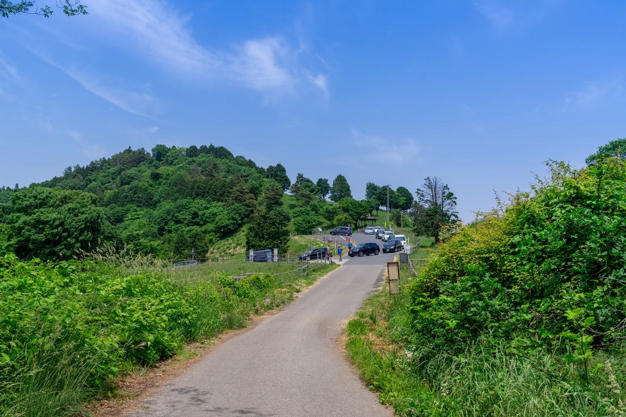 天空のポピー会場付近の道路渋滞