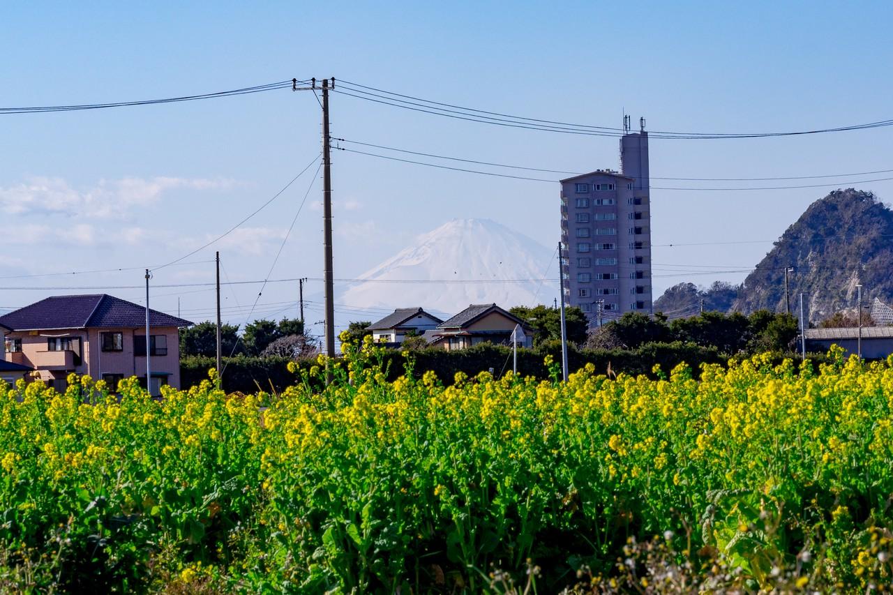 200209伊予ヶ岳_117