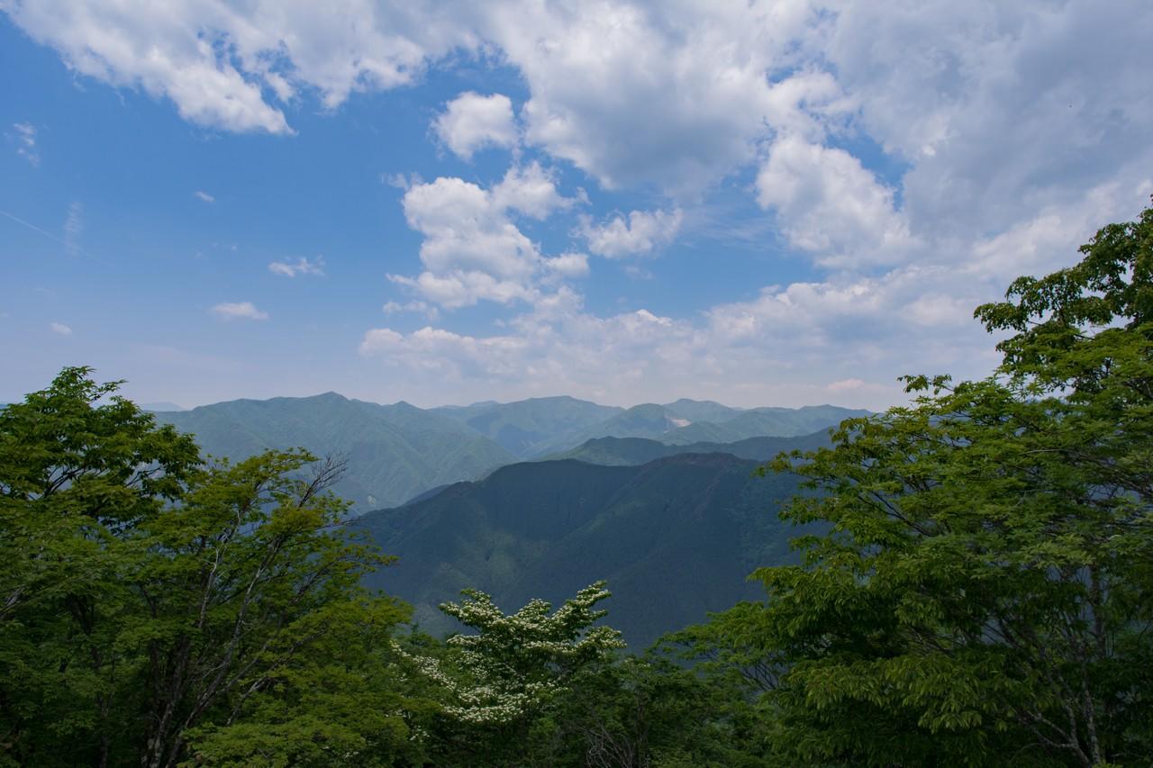 川苔山山頂からの眺望