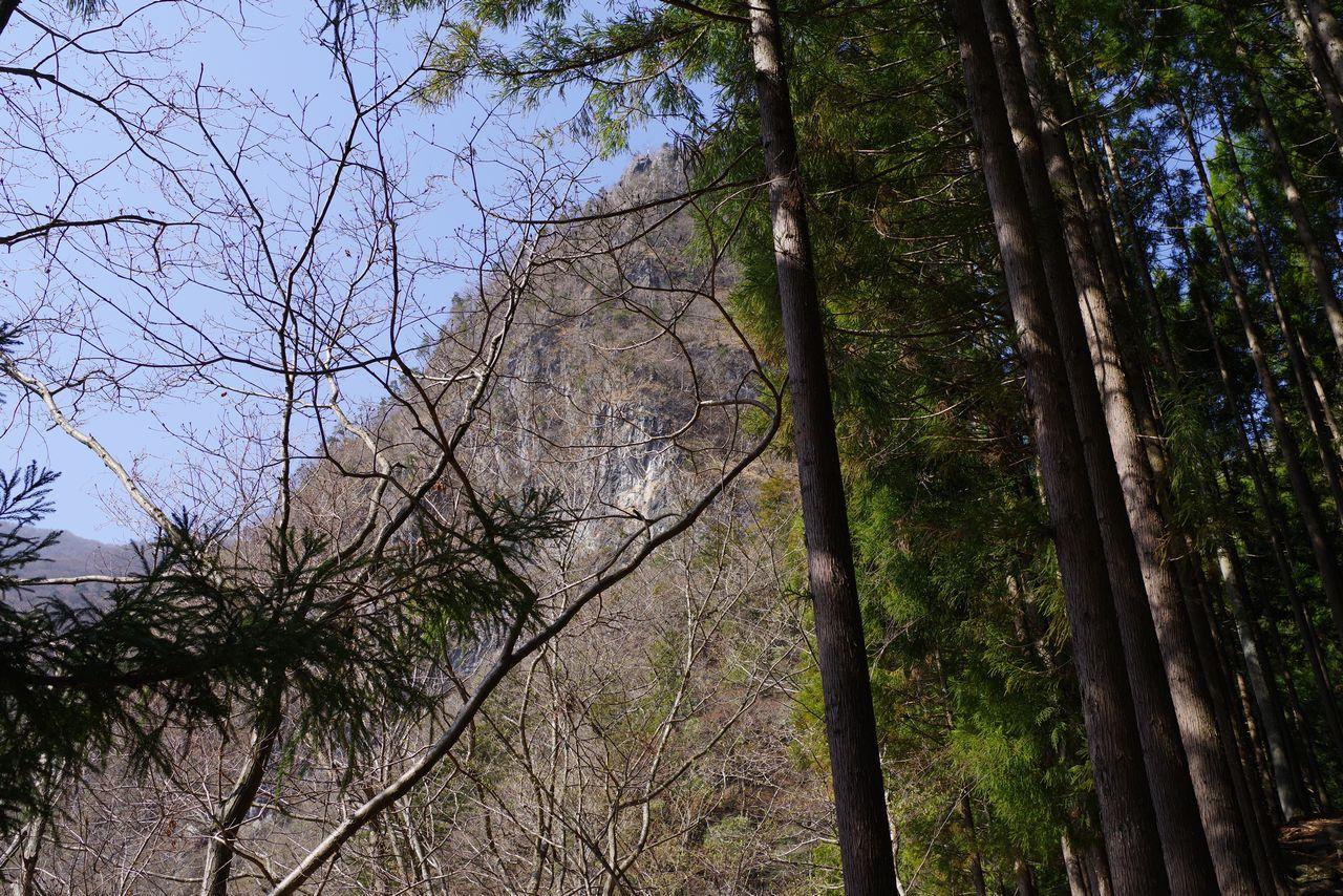 根元から見上げた稲村岩