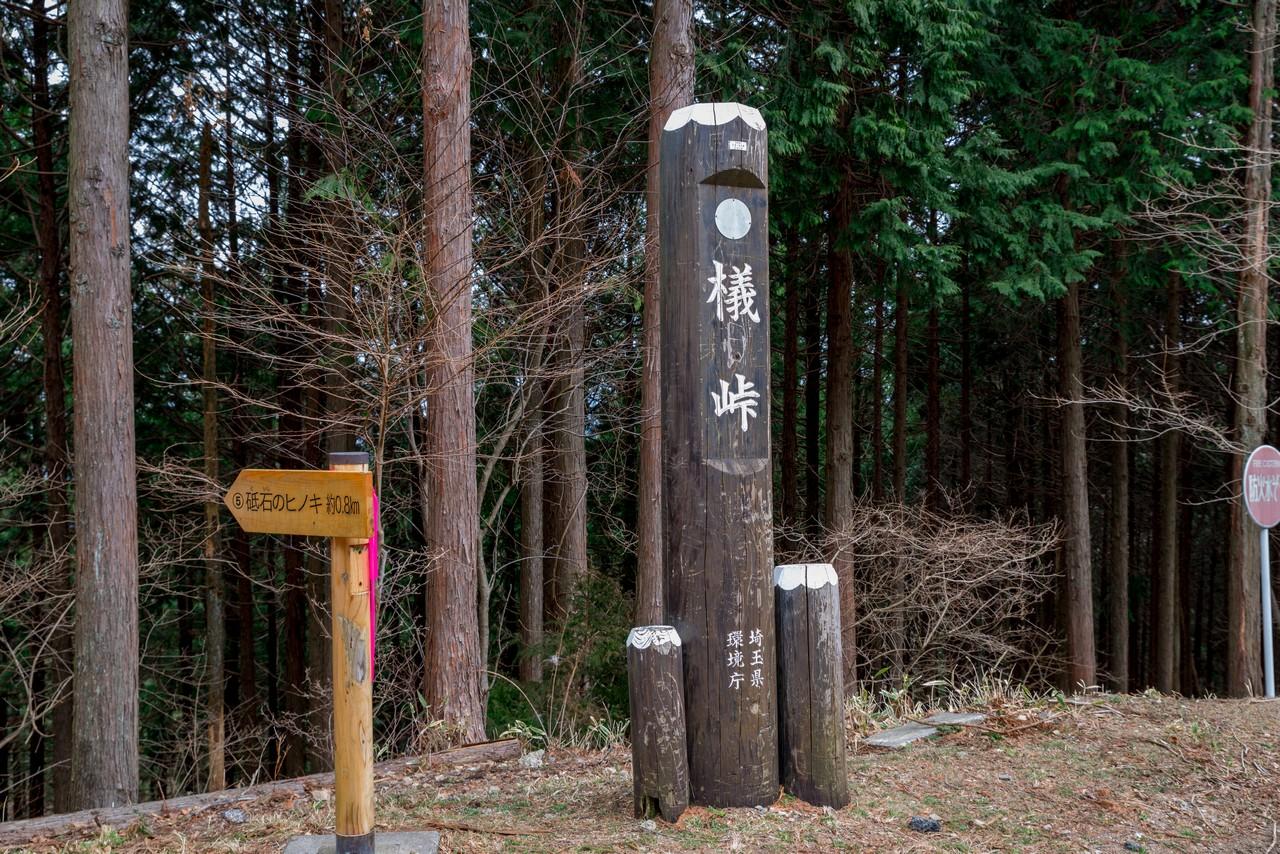 200215丸山_088