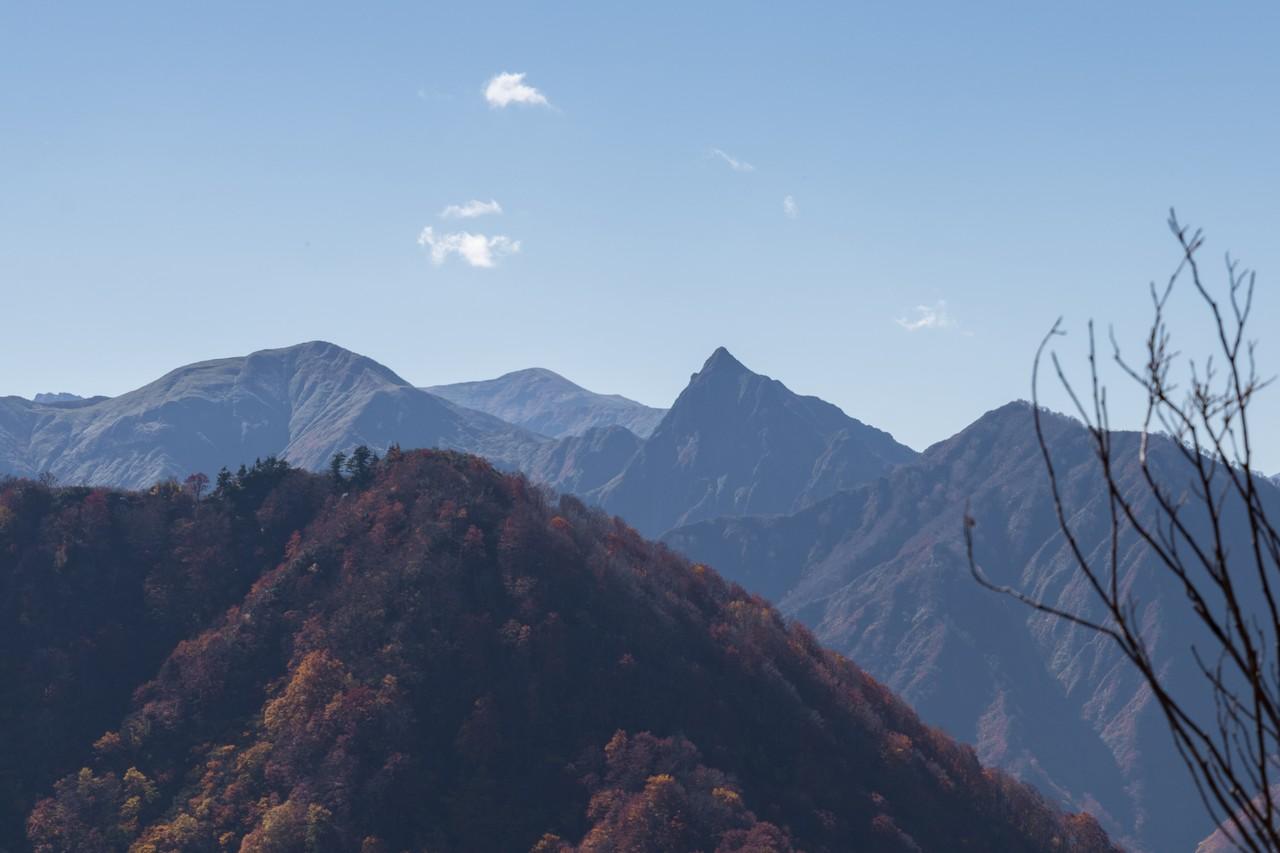 巻機山から見た大源太山