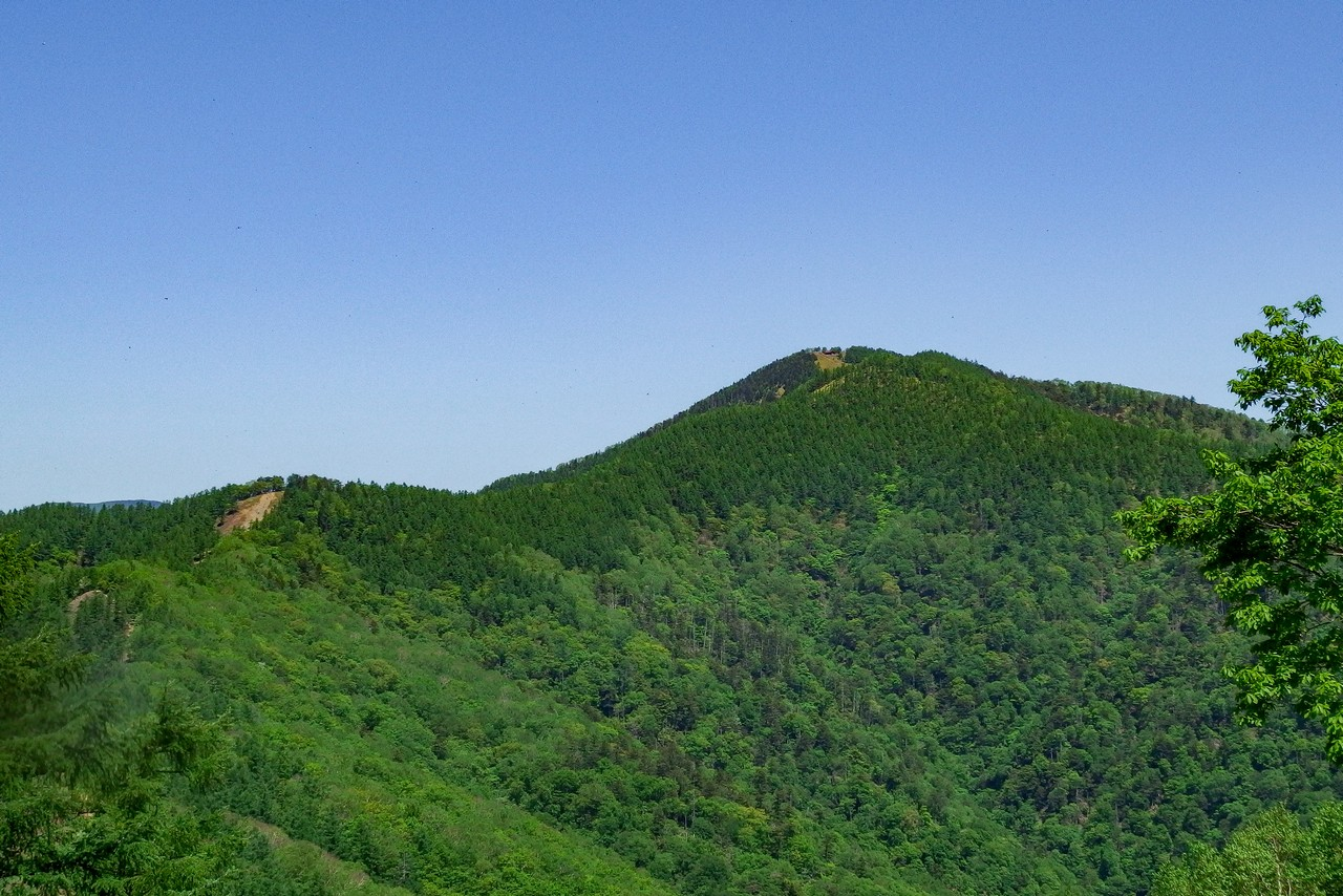 七ツ石山から見た雲取山