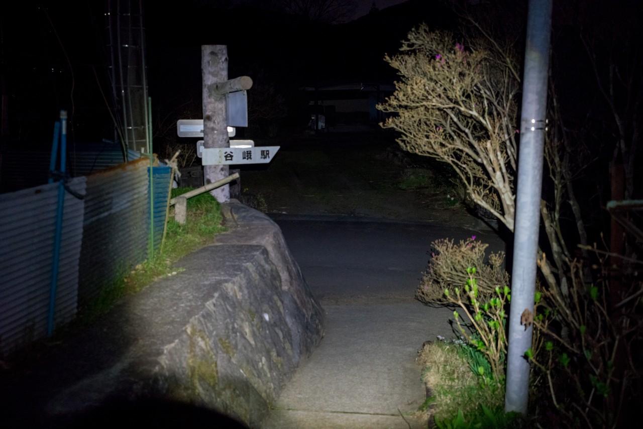 200320大野山_0088