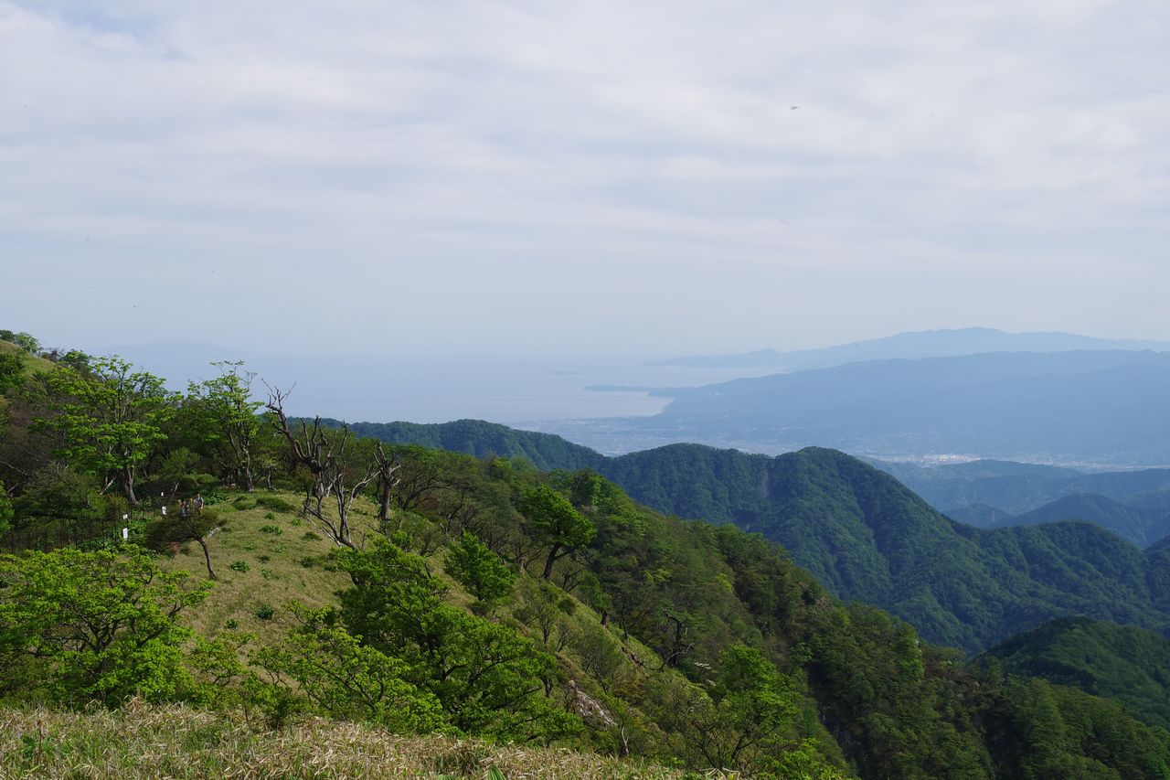 丹沢主脈から見た相模湾