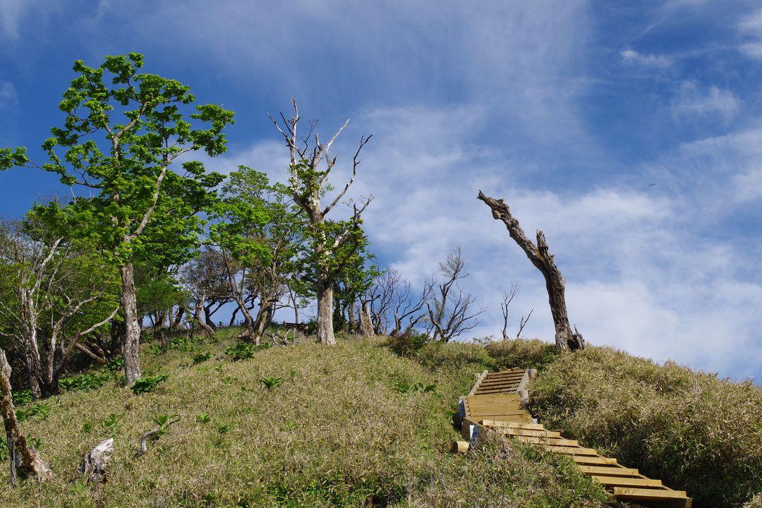 丹沢主脈 丹沢山への登り