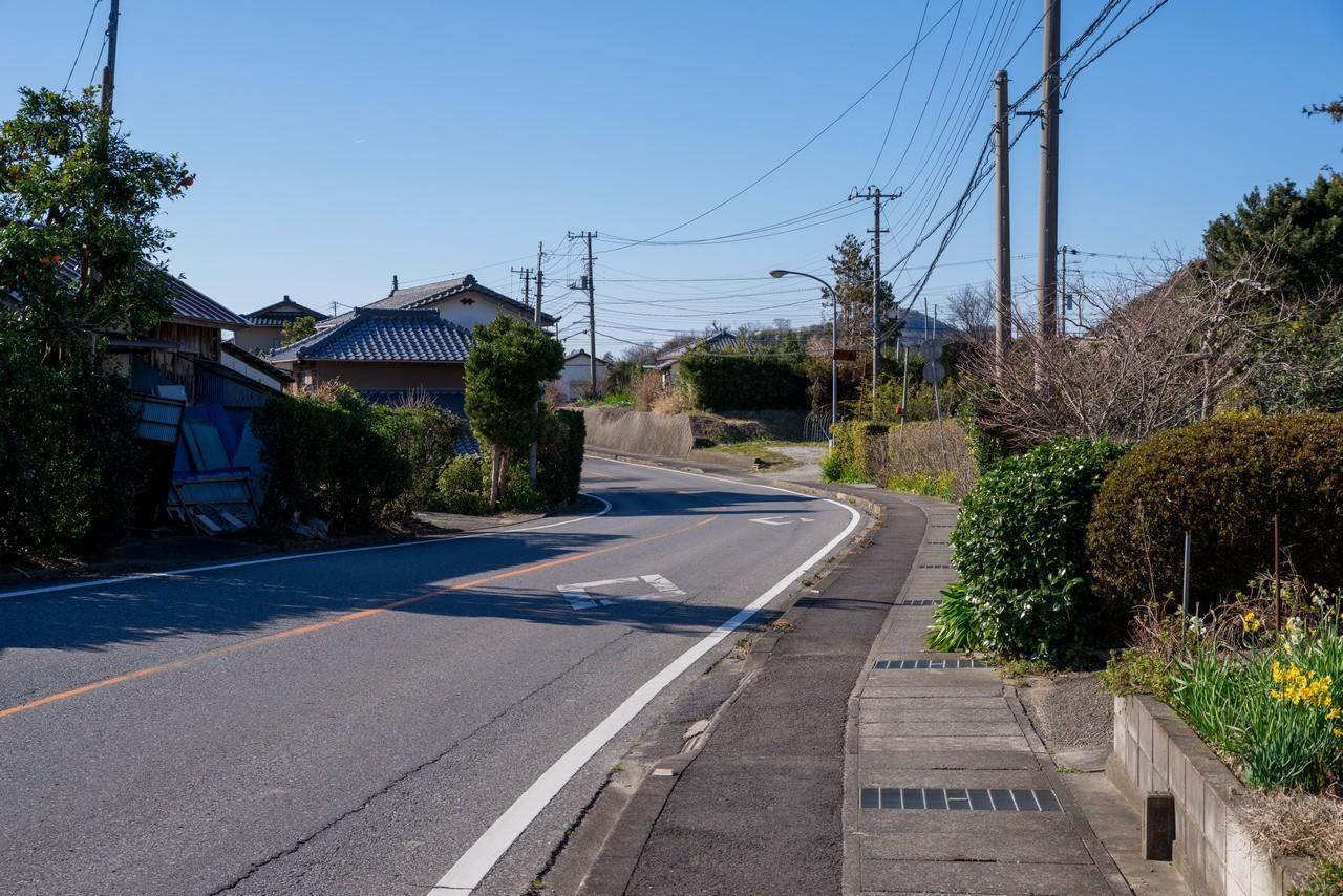 200209伊予ヶ岳_115