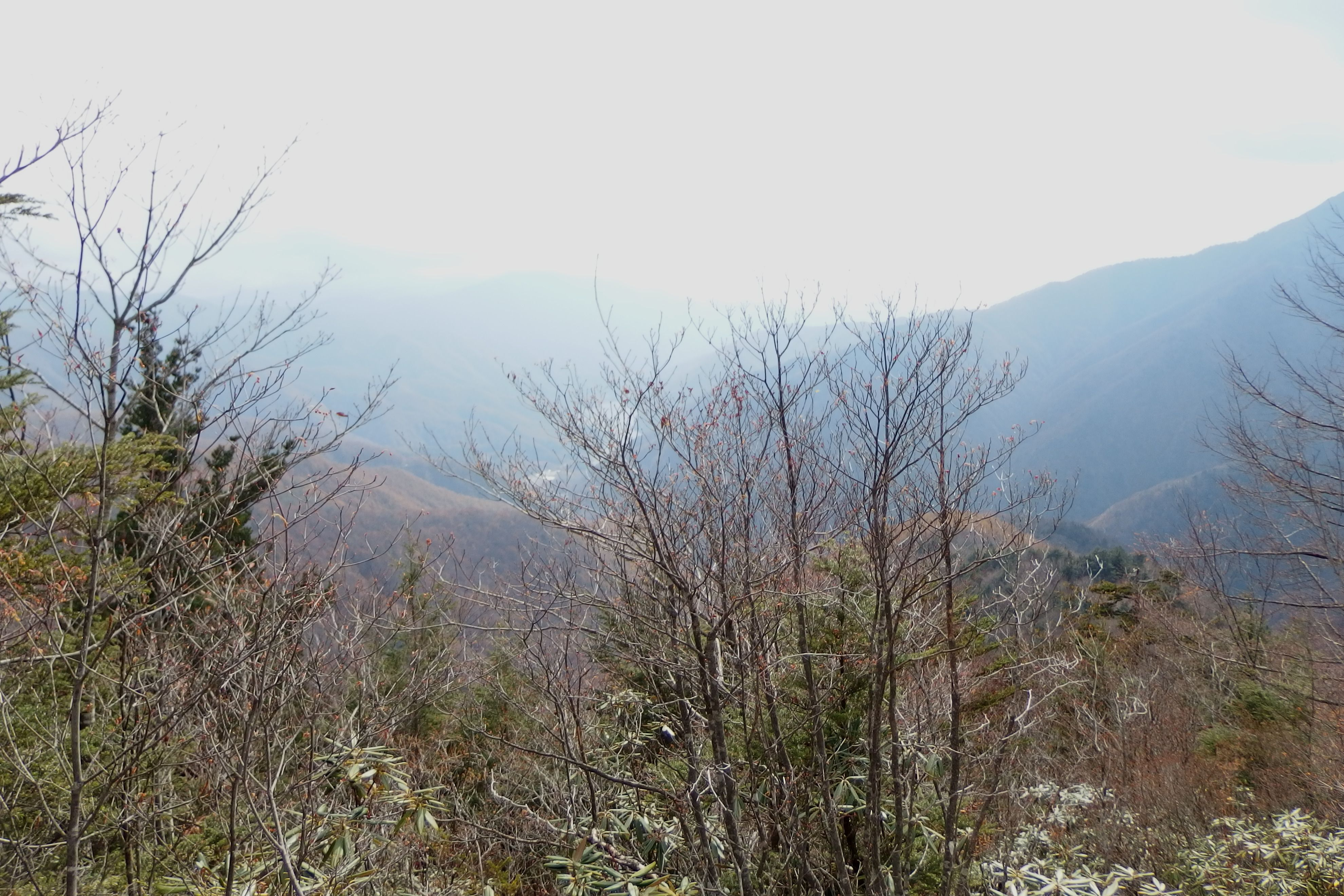 151031甲武信ヶ岳_010