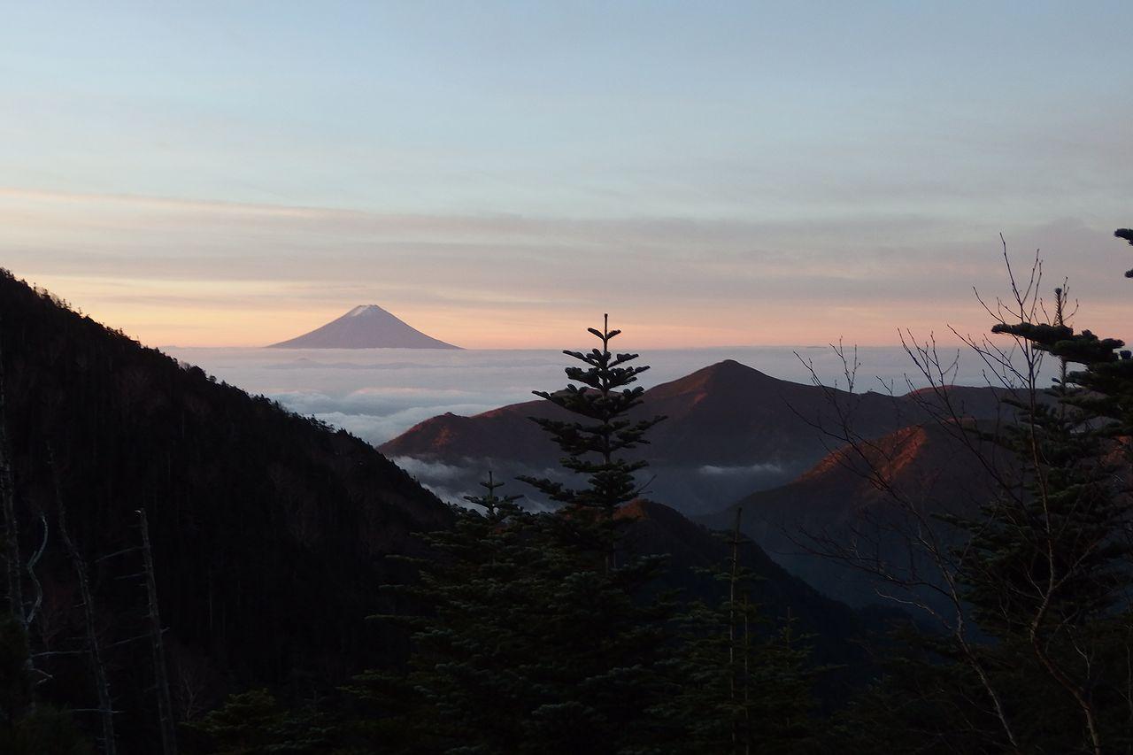 甲武信ヶ岳から見た富士山と雲海