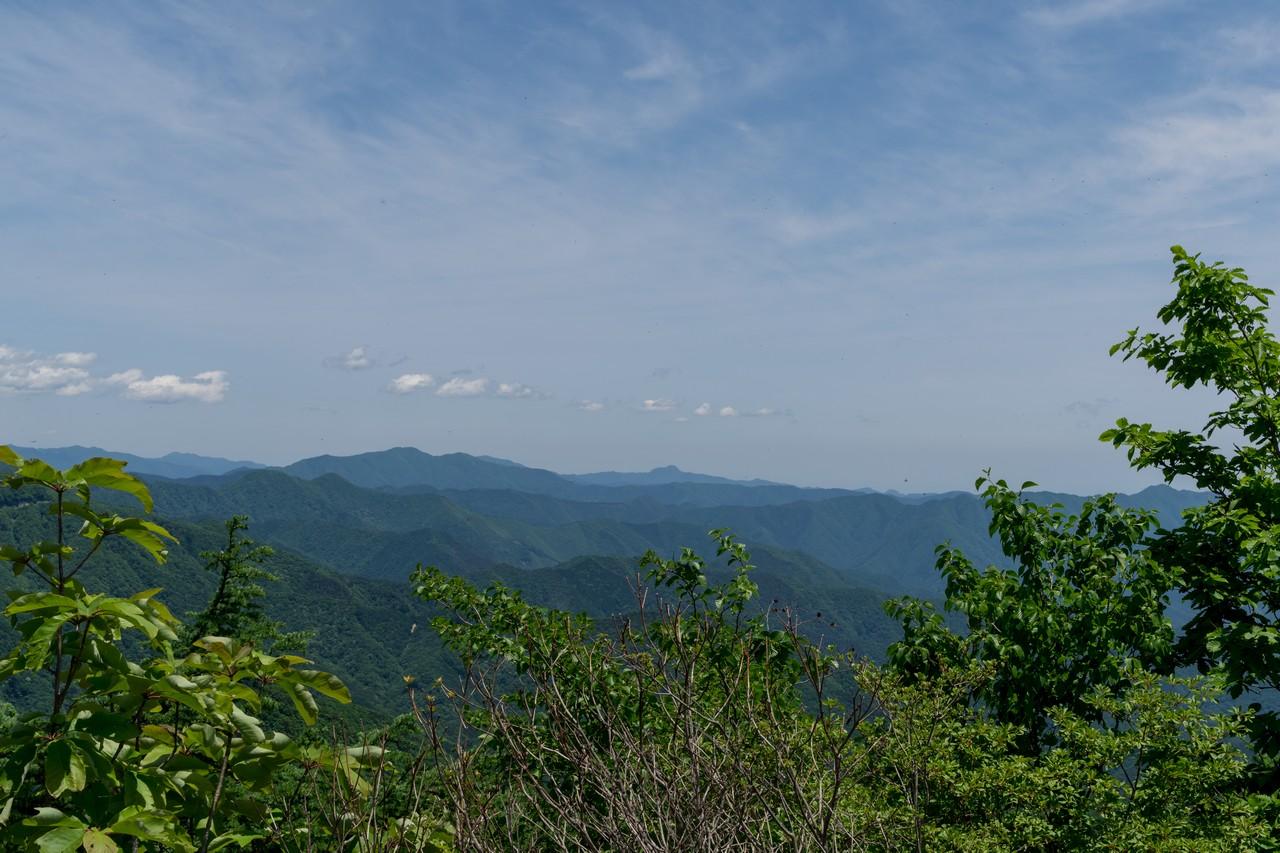 170603滝子山_056