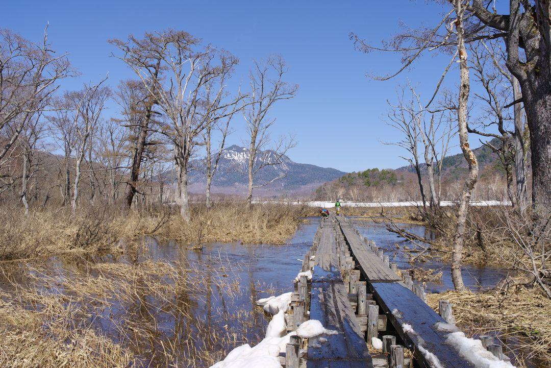 尾瀬ヶ原 水の上を通る木道