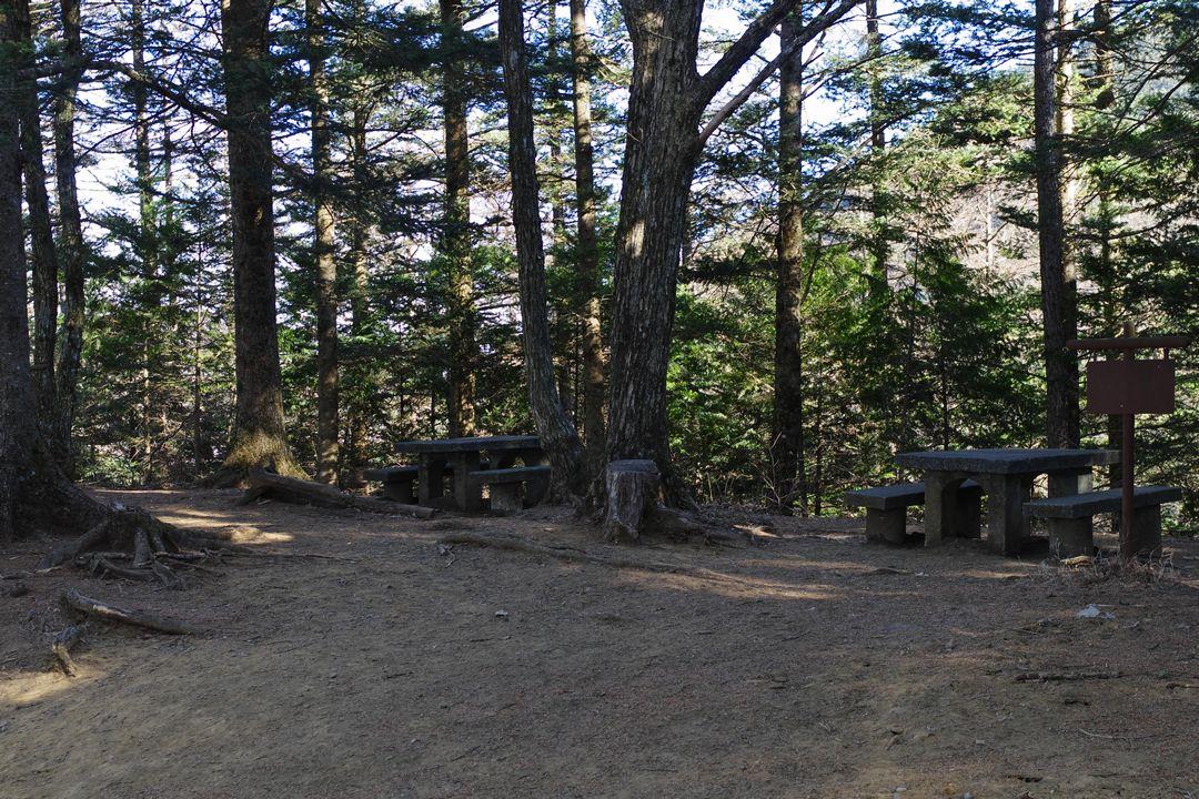 三ッ峠山 中間地点のベンチ