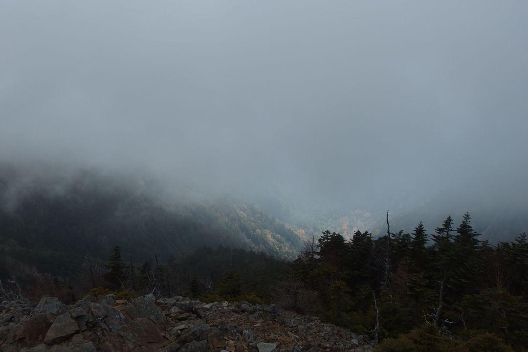 ガスに覆われた甲武信ヶ岳の山頂