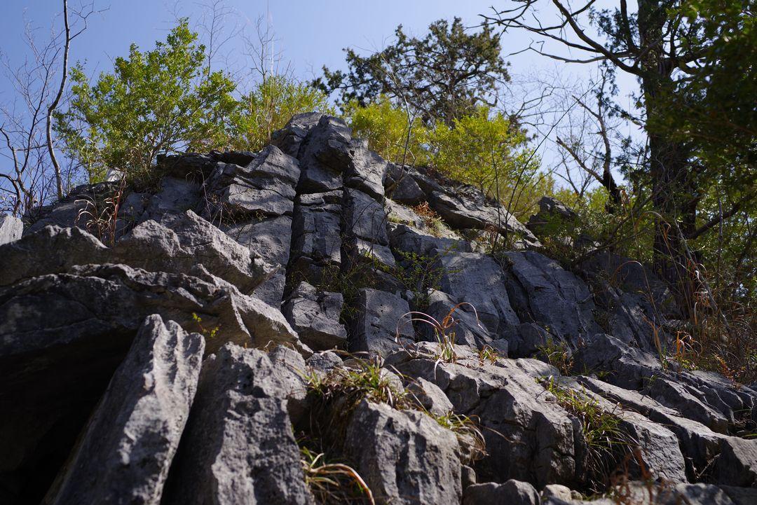 稲村岩への登り