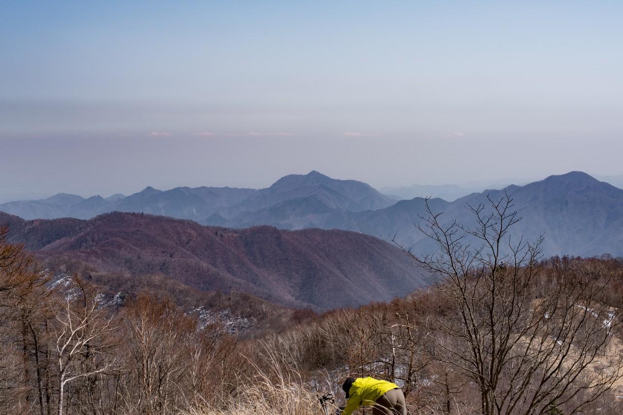 鷹ノ巣山から見た大岳山