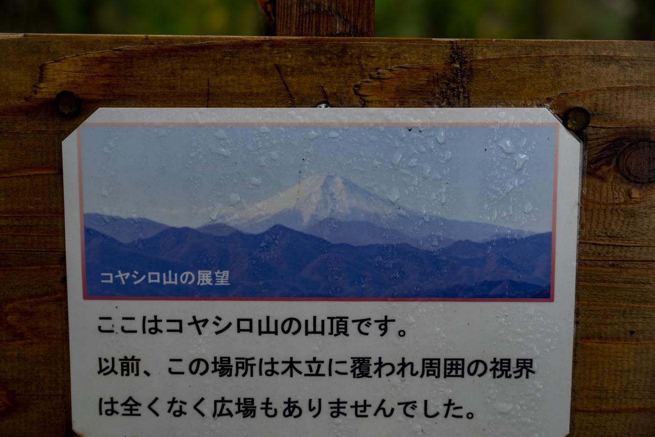 191123要害山_061