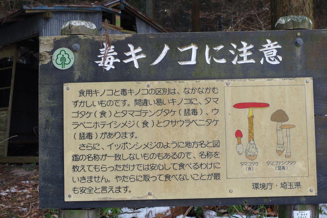 宝登山 毒キノコに注意の看板