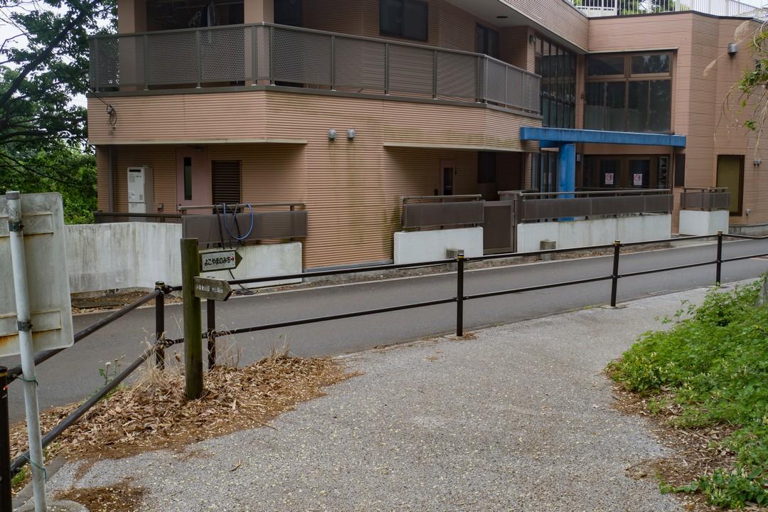 多摩よこやまの道の市街地部分