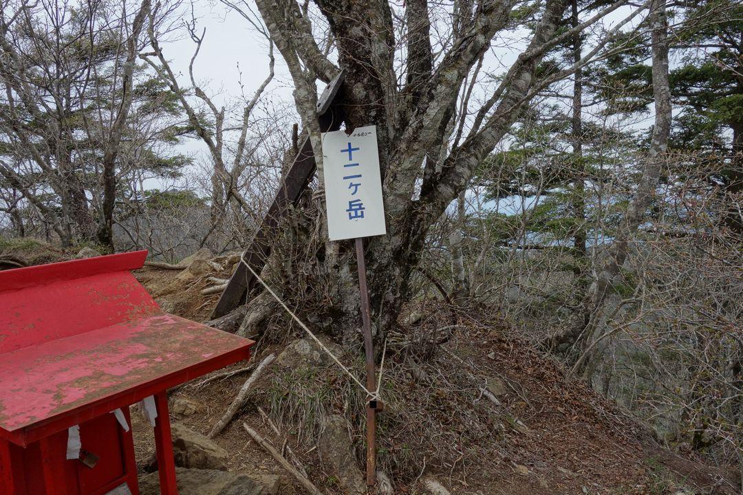 160503十二ヶ岳_051